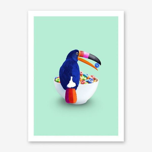 Picture of Loop Toucan