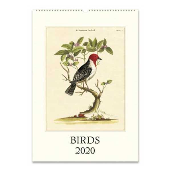 Picture of Birds Poster Wall Calendar